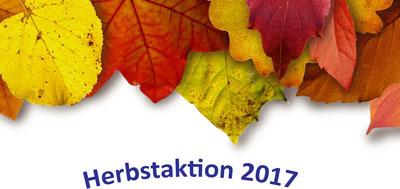 Auro Herbstaktion Anti-Schimmel